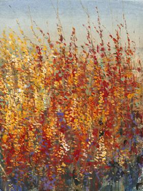 High Desert Blossoms II by Tim O'toole