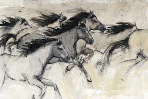 Horses in Motion I by Tim O'toole