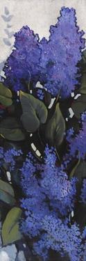 Lilac Spray I by Tim O'toole