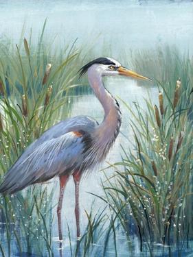 Marsh Heron I by Tim O'toole