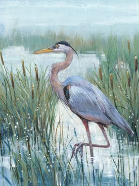 Marsh Heron II by Tim O'toole