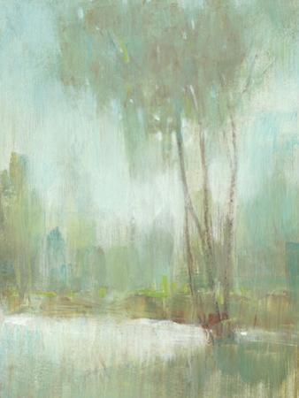 Mist in the Glen II by Tim O'toole