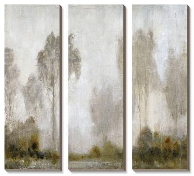 Misty Marsh I by Tim O'toole