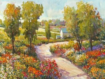 Morning Walk I by Tim O'toole