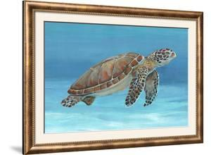 Ocean Sea Turtle I by Tim O'toole