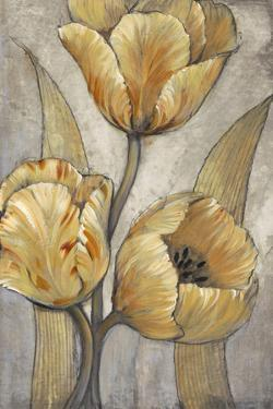 Ochre & Grey Tulips I by Tim O'toole