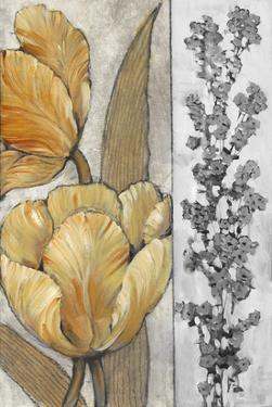 Ochre & Grey Tulips III by Tim O'toole