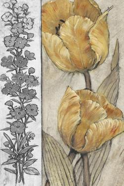 Ochre & Grey Tulips IV by Tim O'toole