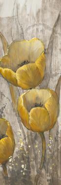 Ochre Tulips I by Tim O'toole
