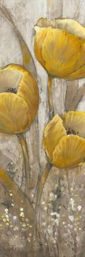 Ochre Tulips II by Tim O'toole