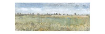 Open Field II by Tim O'toole