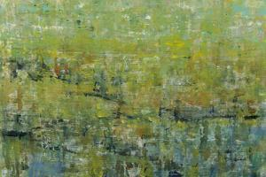 Opulent Field II by Tim O'toole