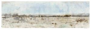 Panoramic II by Tim O'toole