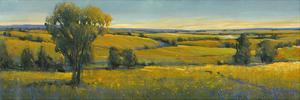 Picturesque Scene I by Tim O'toole