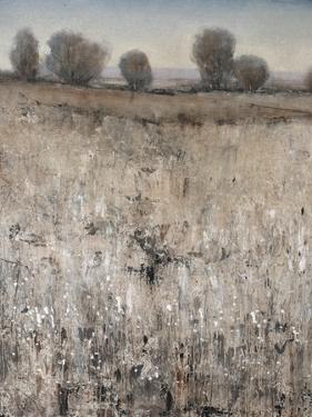 Property Line by Tim O'toole