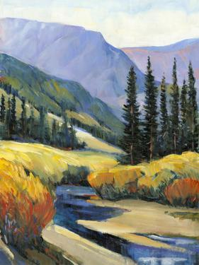 Purple Mountain Majesty I by Tim O'toole