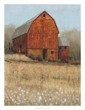 Red Barn View I