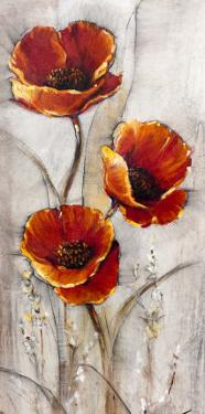 Red Poppies on Taupe I by Tim O'toole
