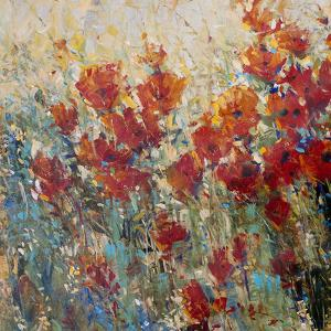 Red Poppy Field I by Tim O'toole