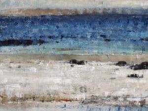 Rocky Beach by Tim O'toole