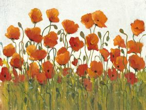 Rows of Poppies I by Tim O'toole