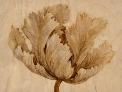 Sepia Tulip on Birch I by Tim O'toole