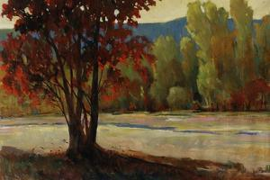 Sign of Fall II by Tim O'toole