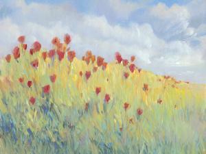 Summer Breeze Meadow I by Tim O'toole