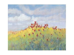 Summer Breeze Meadow II by Tim O'toole