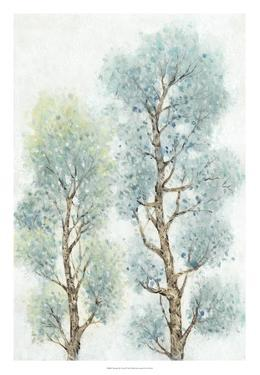 Tranquil Tree Tops II by Tim O'toole