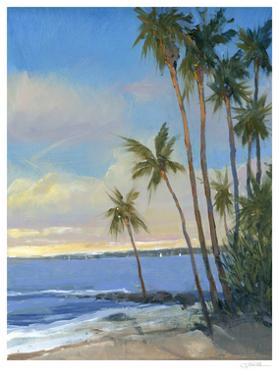 Tropical Breeze I by Tim O'toole