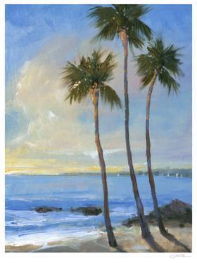 Tropical Breeze II by Tim O'toole