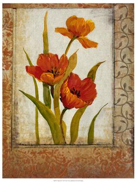 Tulip Inset II by Tim O'toole