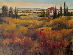 Tuscany I by Tim O'toole