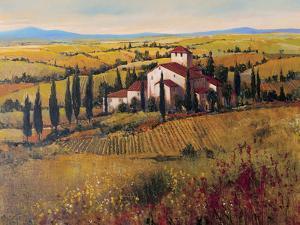 Tuscany III by Tim O'toole