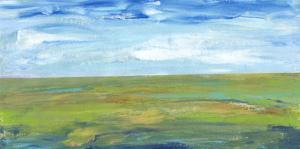 Vast Land I by Tim O'toole