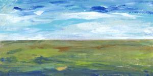Vast Land II by Tim O'toole