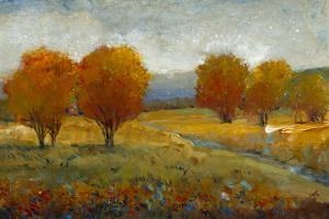 Vivid Brushstrokes II by Tim O'toole