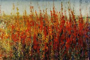 Wildflowers in Summer by Tim O'toole