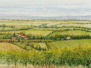 Wine Country View I by Tim O'toole