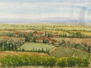 Wine Country View II by Tim O'toole