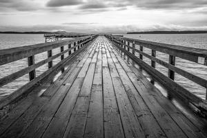 Sidney Pier by Tim Oldford