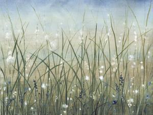 Bliss II by Tim OToole