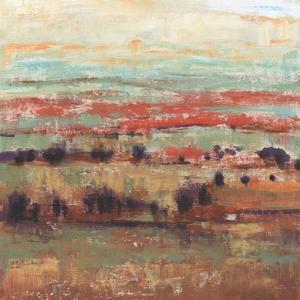 Divided Landscape I by Tim OToole