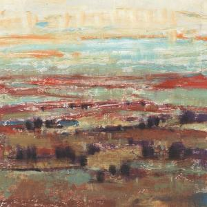 Divided Landscape II by Tim OToole