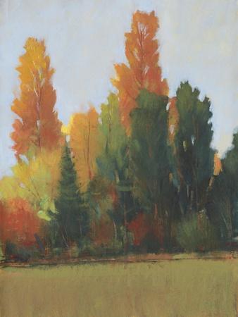 Fall Colors I