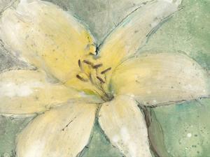 Floral Spirit III by Tim OToole