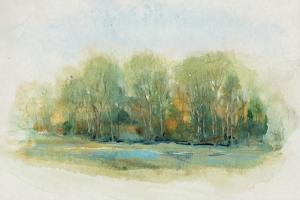 Forest Vignette I by Tim OToole