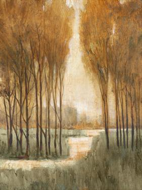 Golden Forest I by Tim OToole