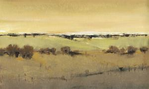 Golden Pasture I by Tim OToole